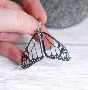 Transparent butterfly earrings gray small
