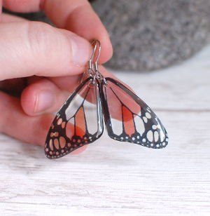 Transparent butterfly earrings gray red small